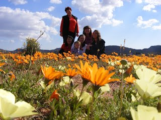 It makes for great photographs posing in Namaqualand's flowers
